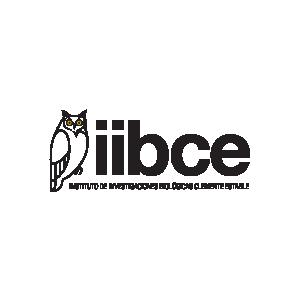 Logo IIBCE