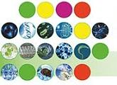 Jornadas Biociencias